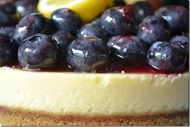 Lemon and blueberry cheesecake closeup